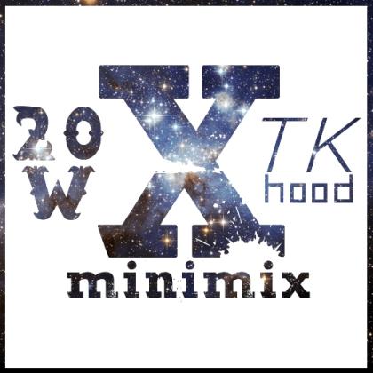 20w-x-tk-cover