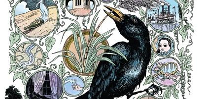 Costello's latest album delves into decidedly more rustic territory